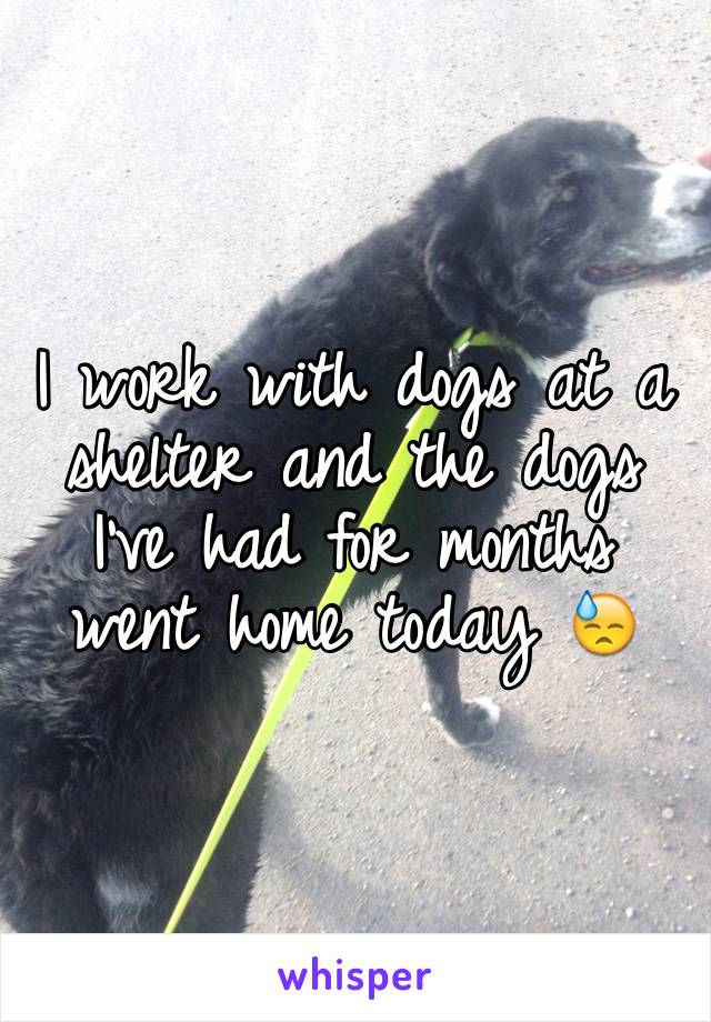 I work with dogs at a shelter and the dogs I've had for months went home today 😓