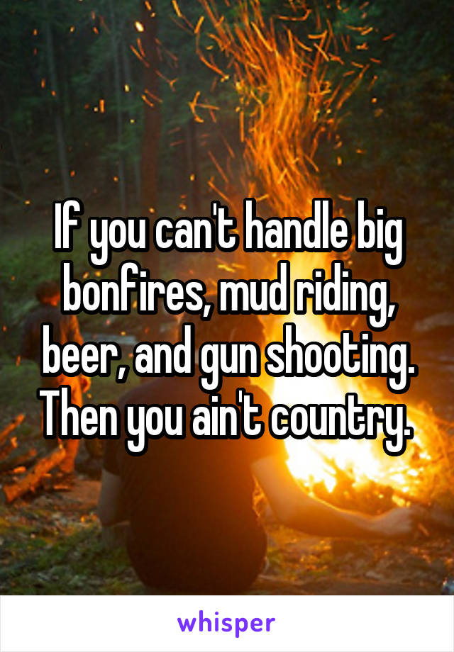 If you can't handle big bonfires, mud riding, beer, and gun shooting. Then you ain't country.