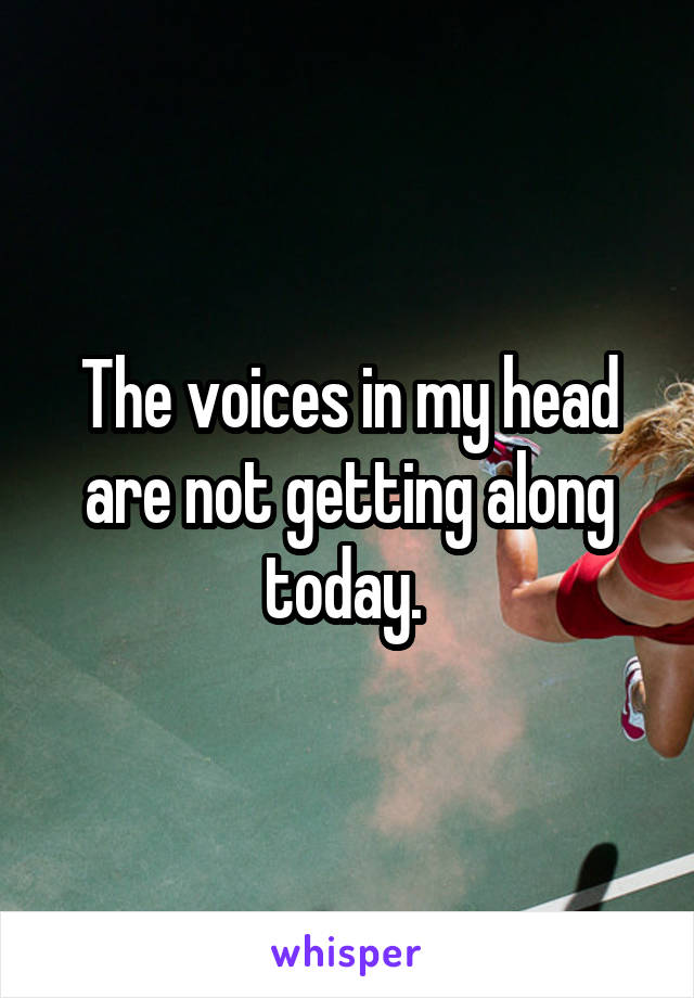 The voices in my head are not getting along today.