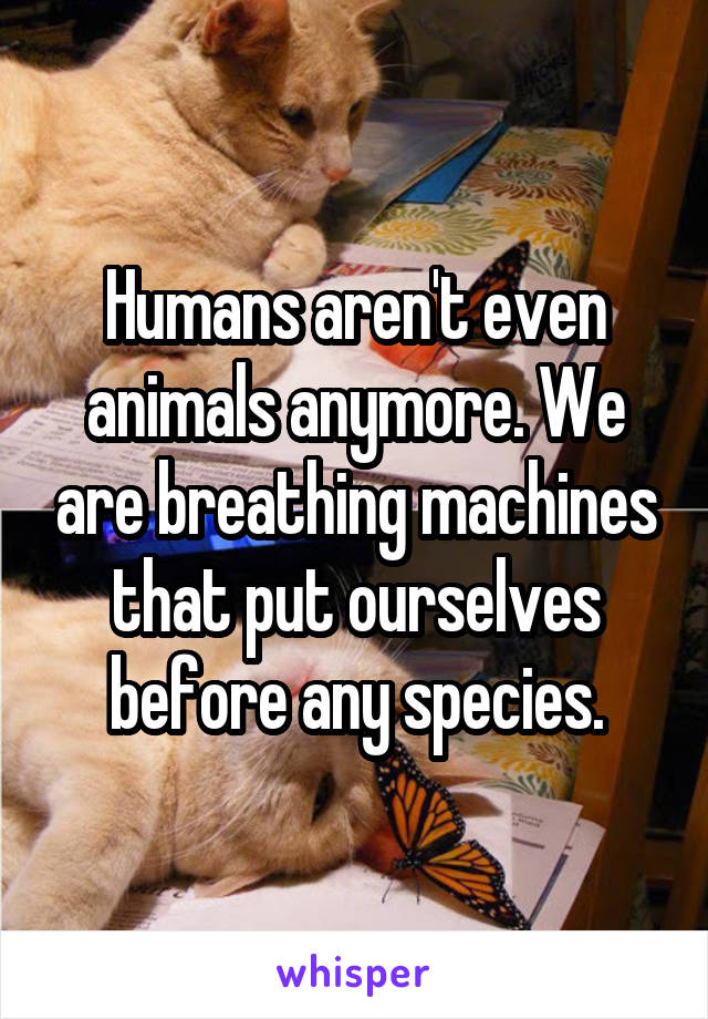 Humans aren't even animals anymore. We are breathing machines that put ourselves before any species.