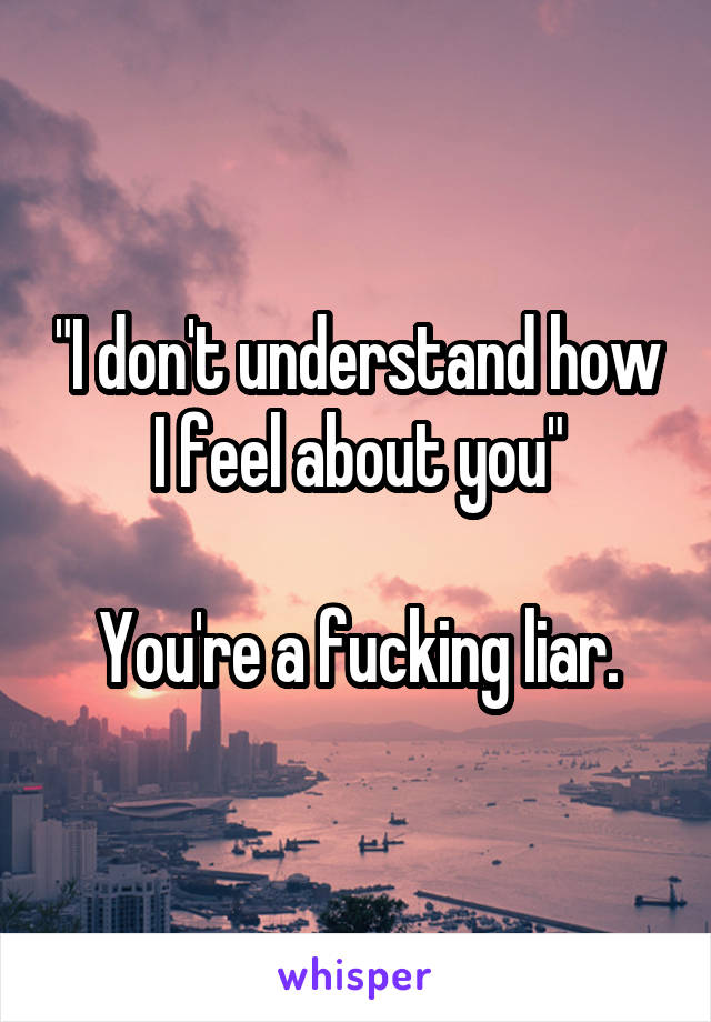 """I don't understand how I feel about you""  You're a fucking liar."