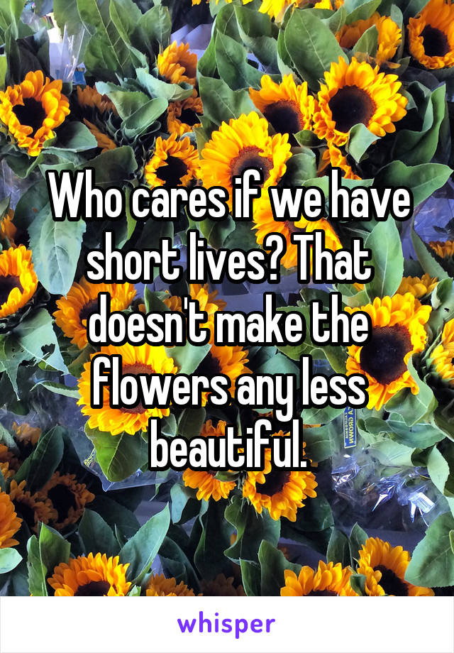 Who cares if we have short lives? That doesn't make the flowers any less beautiful.