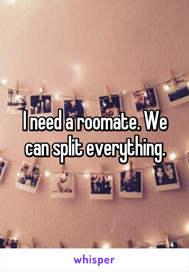 I need a roomate. We can split everything.