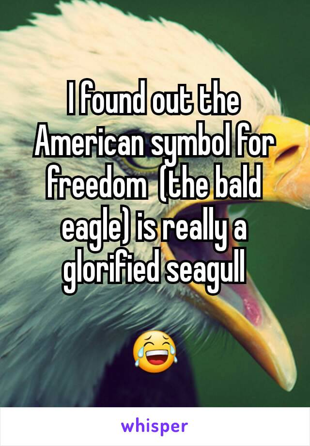 I found out the American symbol for freedom  (the bald eagle) is really a glorified seagull  😂