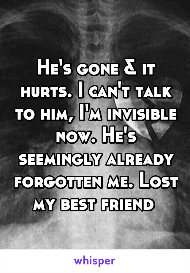 He's gone & it hurts. I can't talk to him, I'm invisible now. He's seemingly already forgotten me. Lost my best friend