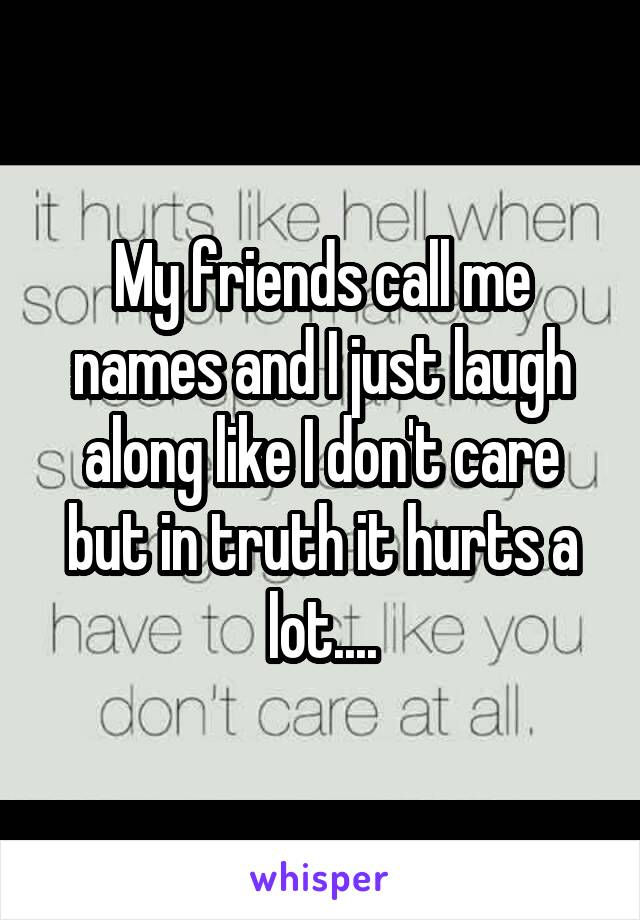My friends call me names and I just laugh along like I don't care but in truth it hurts a lot....