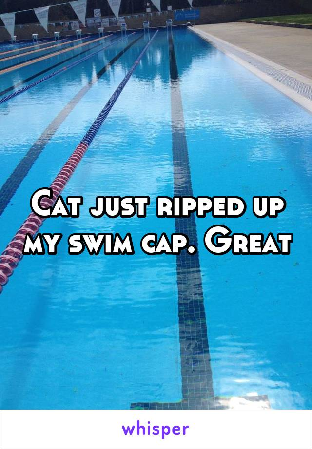 Cat just ripped up my swim cap. Great