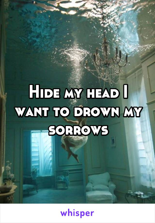 Hide my head I want to drown my sorrows