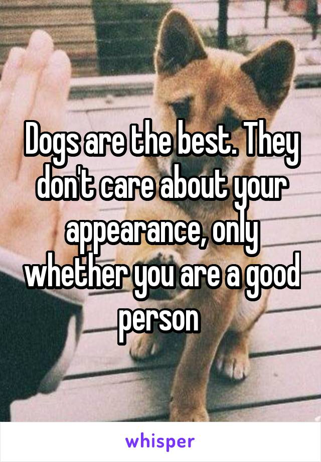 Dogs are the best. They don't care about your appearance, only whether you are a good person