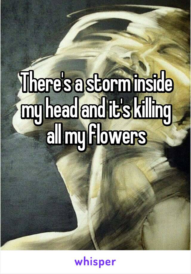 There's a storm inside my head and it's killing all my flowers