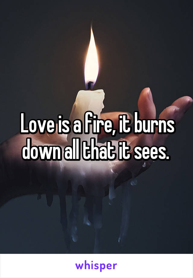 Love is a fire, it burns down all that it sees.