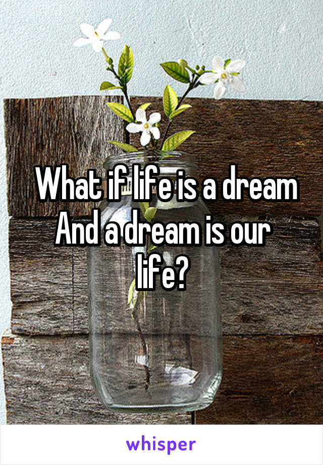 What if life is a dream And a dream is our life?