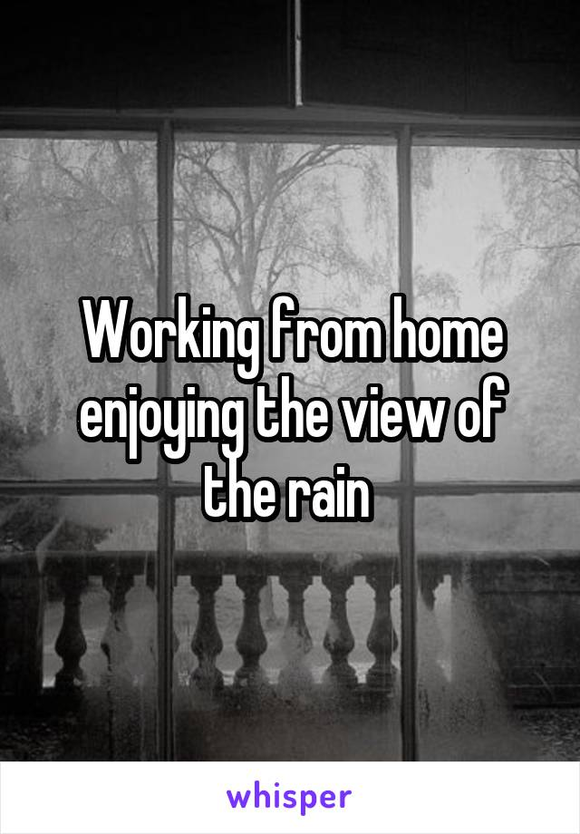 Working from home enjoying the view of the rain