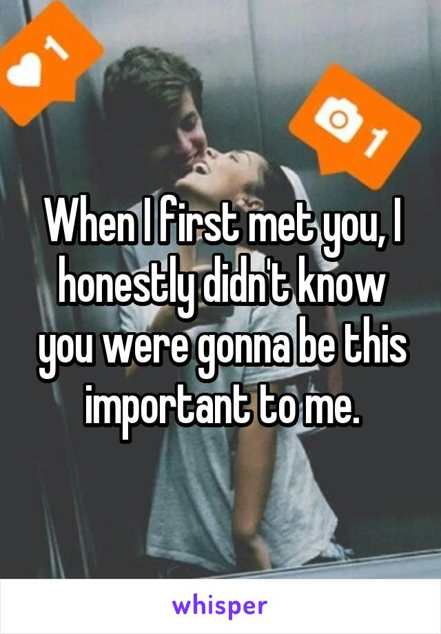 When I first met you, I honestly didn't know you were gonna be this important to me.