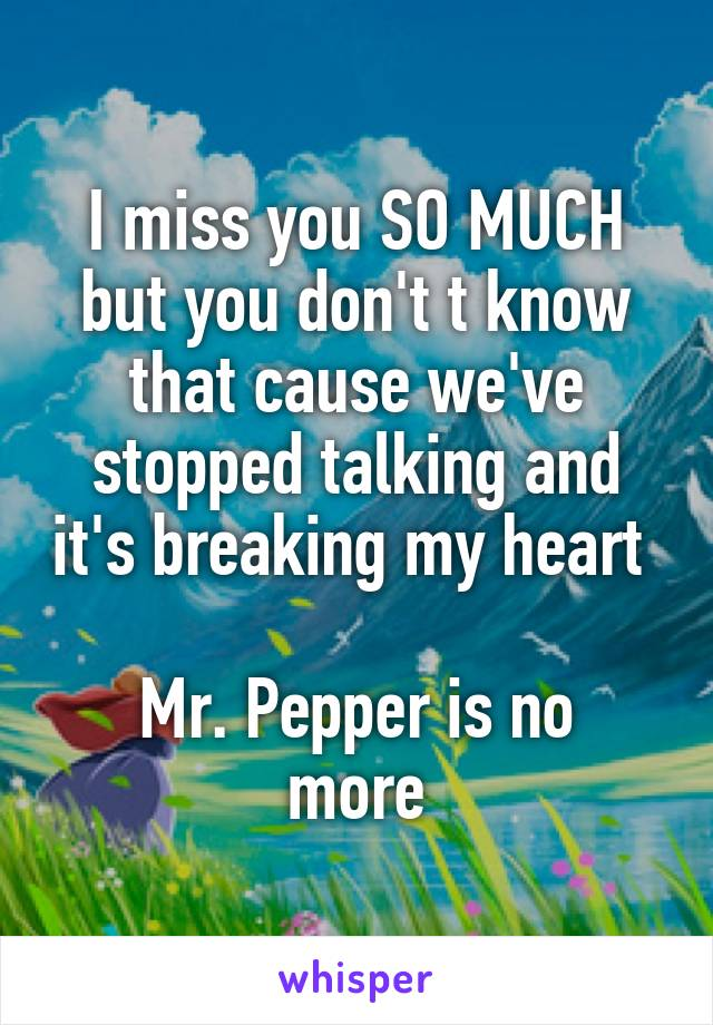 I miss you SO MUCH but you don't t know that cause we've stopped talking and it's breaking my heart   Mr. Pepper is no more