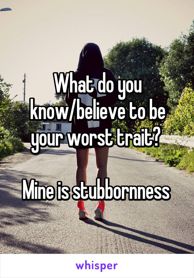 What do you know/believe to be your worst trait?   Mine is stubbornness