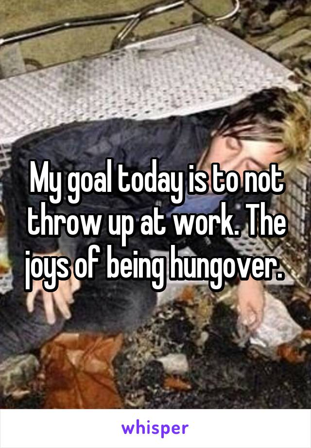 My goal today is to not throw up at work. The joys of being hungover.