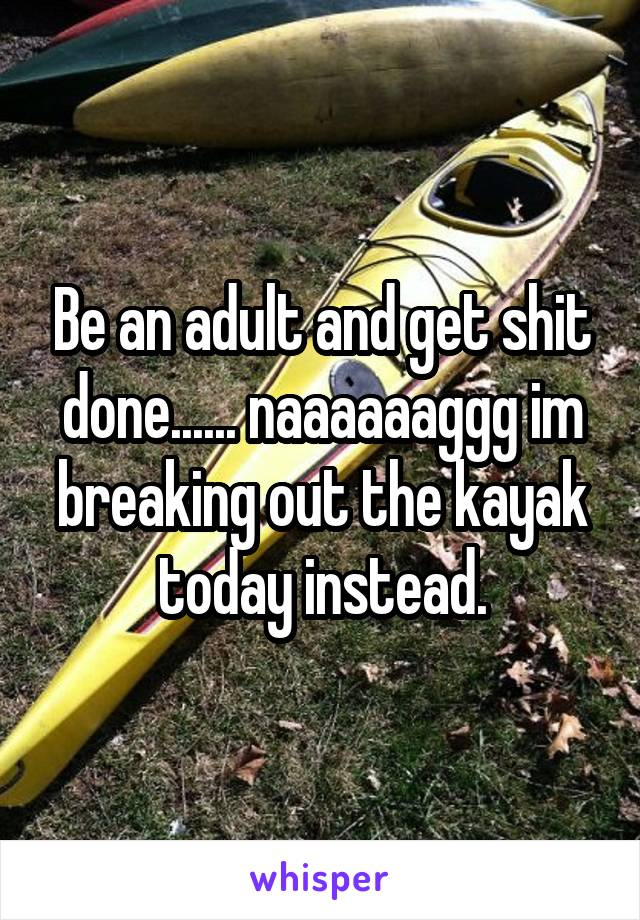 Be an adult and get shit done...... naaaaaaggg im breaking out the kayak today instead.