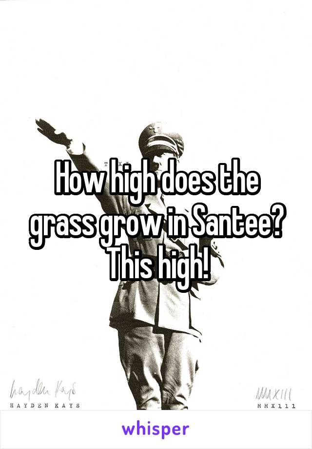 How high does the grass grow in Santee? This high!
