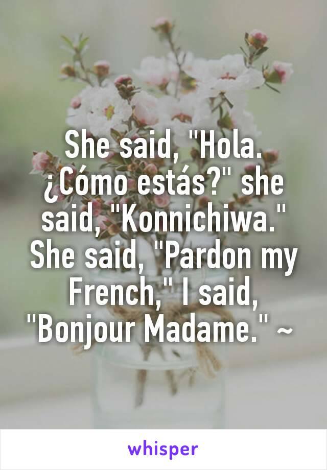 """She said, """"Hola. ¿Cómo estás?"""" she said, """"Konnichiwa."""" She said, """"Pardon my French,"""" I said, """"Bonjour Madame."""" ~"""