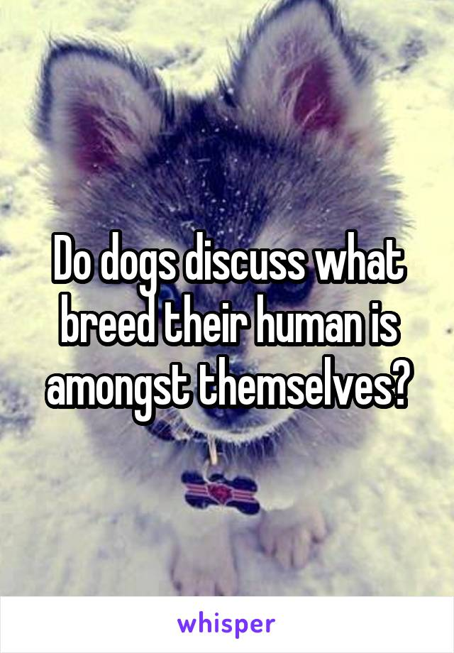 Do dogs discuss what breed their human is amongst themselves?