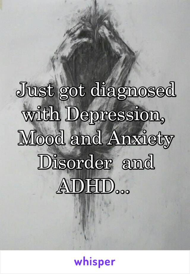 Just got diagnosed with Depression,  Mood and Anxiety Disorder  and ADHD...