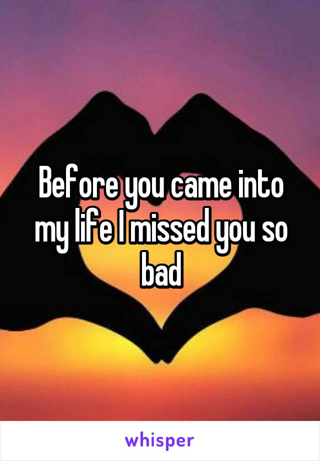 Before you came into my life I missed you so bad