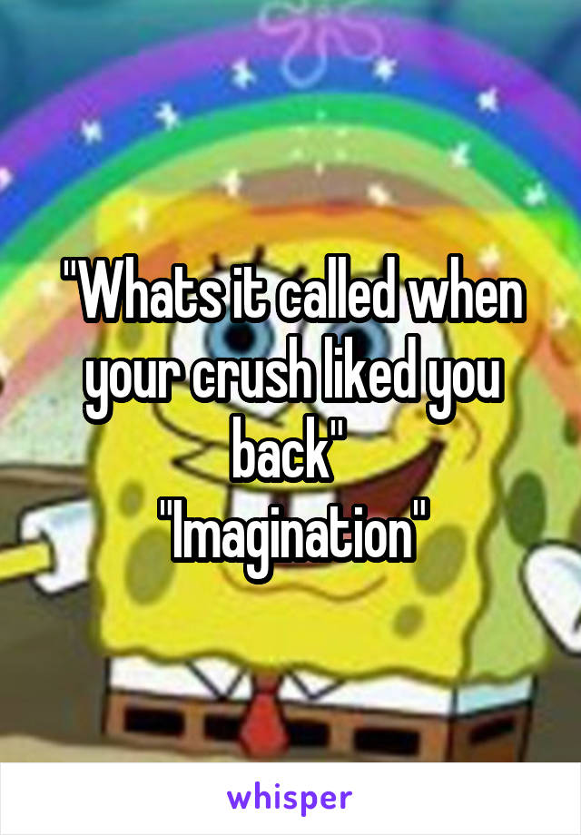 """""""Whats it called when your crush liked you back""""  """"Imagination"""""""