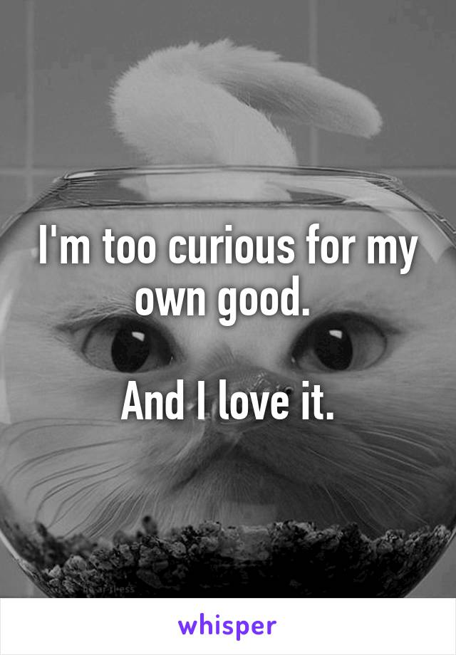 I'm too curious for my own good.   And I love it.
