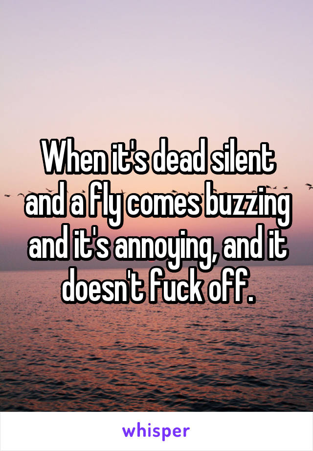 When it's dead silent and a fly comes buzzing and it's annoying, and it doesn't fuck off.
