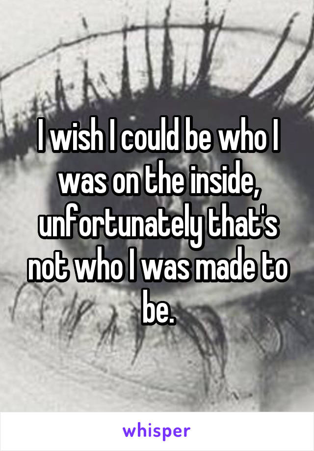 I wish I could be who I was on the inside, unfortunately that's not who I was made to be.
