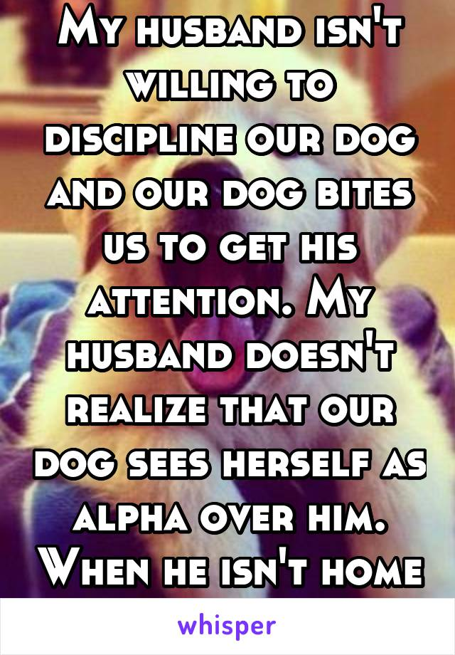 My husband isn't willing to discipline our dog and our dog bites us to get his attention. My husband doesn't realize that our dog sees herself as alpha over him. When he isn't home our dog is good.