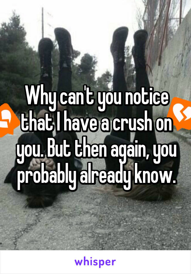 Why can't you notice that I have a crush on you. But then again, you probably already know.