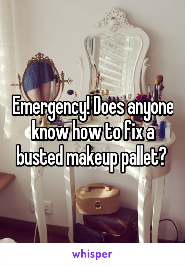 Emergency! Does anyone know how to fix a busted makeup pallet?