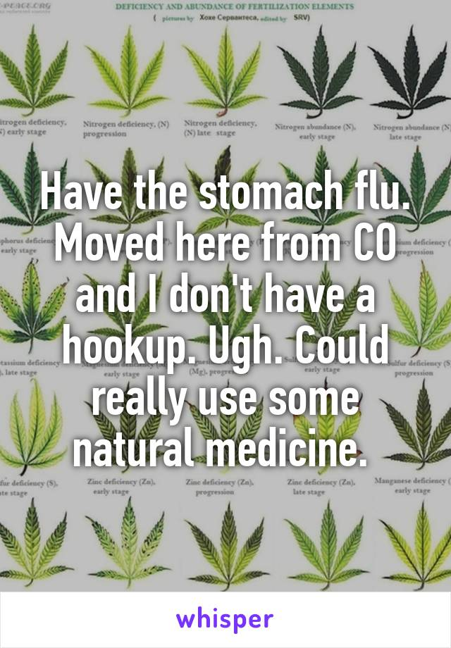 Have the stomach flu. Moved here from CO and I don't have a hookup. Ugh. Could really use some natural medicine.