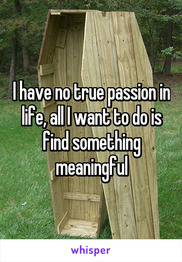 I have no true passion in life, all I want to do is find something meaningful