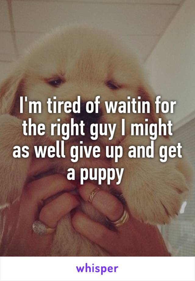 I'm tired of waitin for the right guy I might as well give up and get a puppy