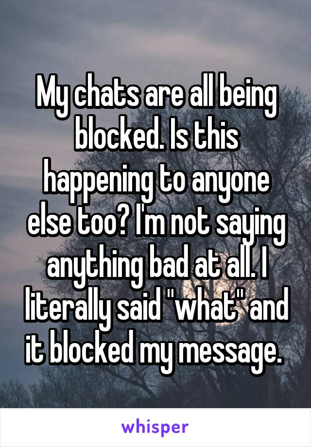 """My chats are all being blocked. Is this happening to anyone else too? I'm not saying anything bad at all. I literally said """"what"""" and it blocked my message."""