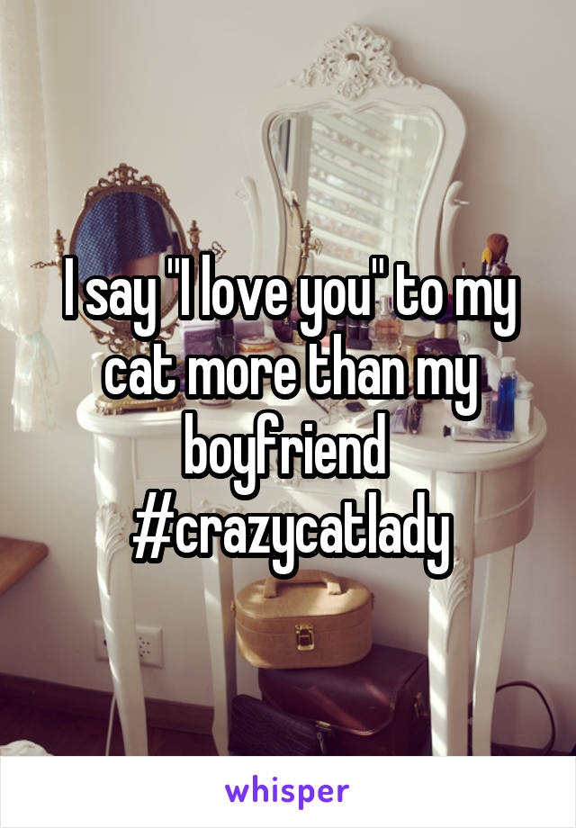 """I say """"I love you"""" to my cat more than my boyfriend  #crazycatlady"""