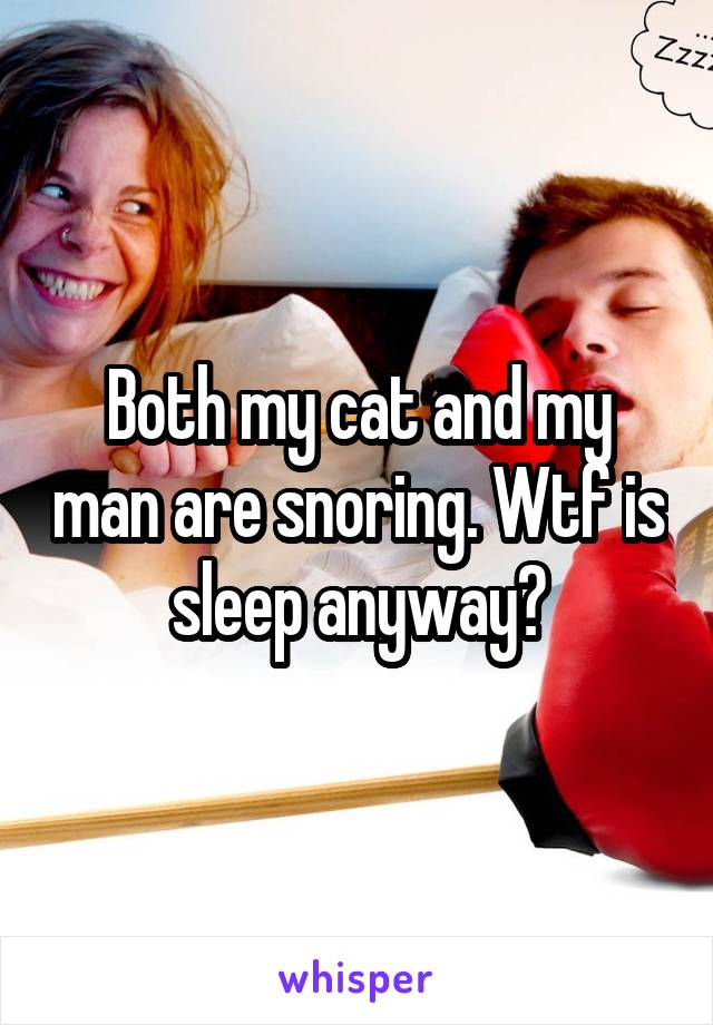 Both my cat and my man are snoring. Wtf is sleep anyway?