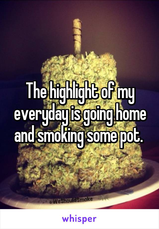 The highlight of my everyday is going home and smoking some pot.