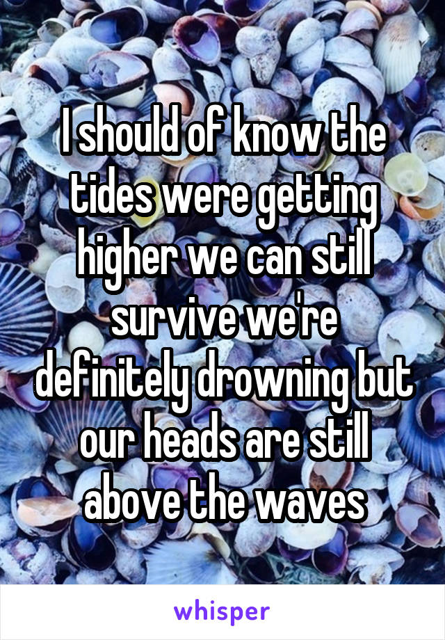I should of know the tides were getting higher we can still survive we're definitely drowning but our heads are still above the waves