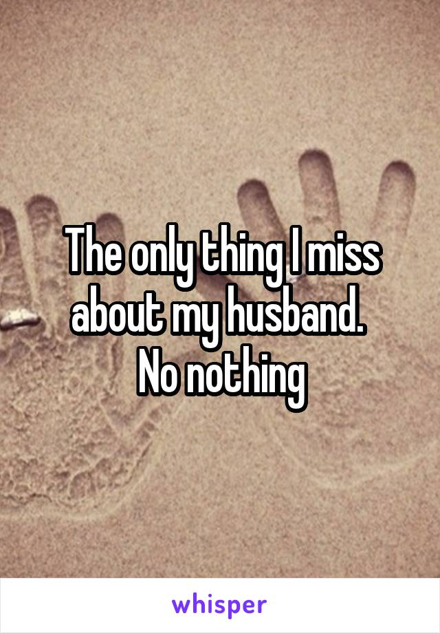 The only thing I miss about my husband.  No nothing