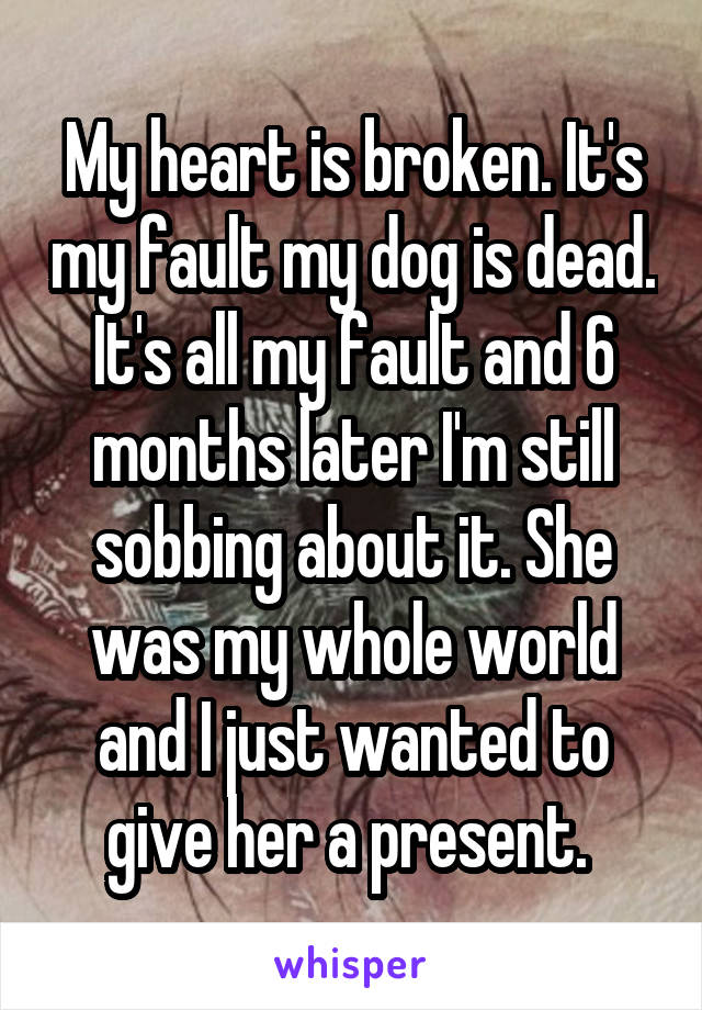 My heart is broken. It's my fault my dog is dead. It's all my fault and 6 months later I'm still sobbing about it. She was my whole world and I just wanted to give her a present.