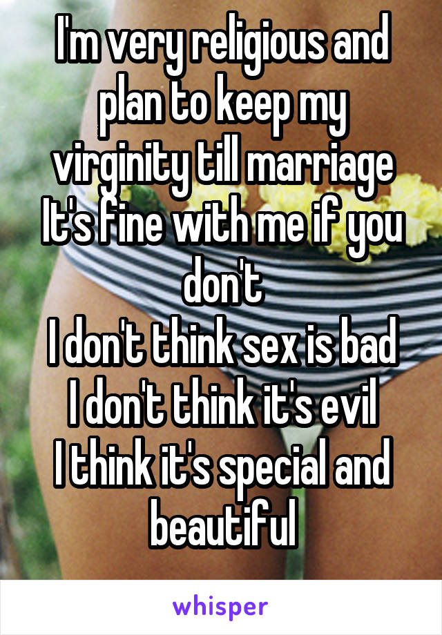 I'm very religious and plan to keep my virginity till marriage It's fine with me if you don't I don't think sex is bad I don't think it's evil I think it's special and beautiful