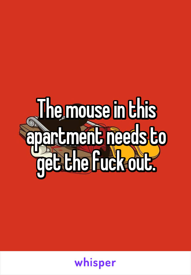 The mouse in this apartment needs to get the fuck out.