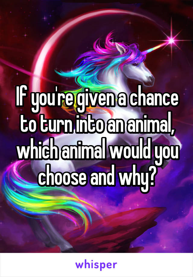 If you're given a chance to turn into an animal, which animal would you choose and why?