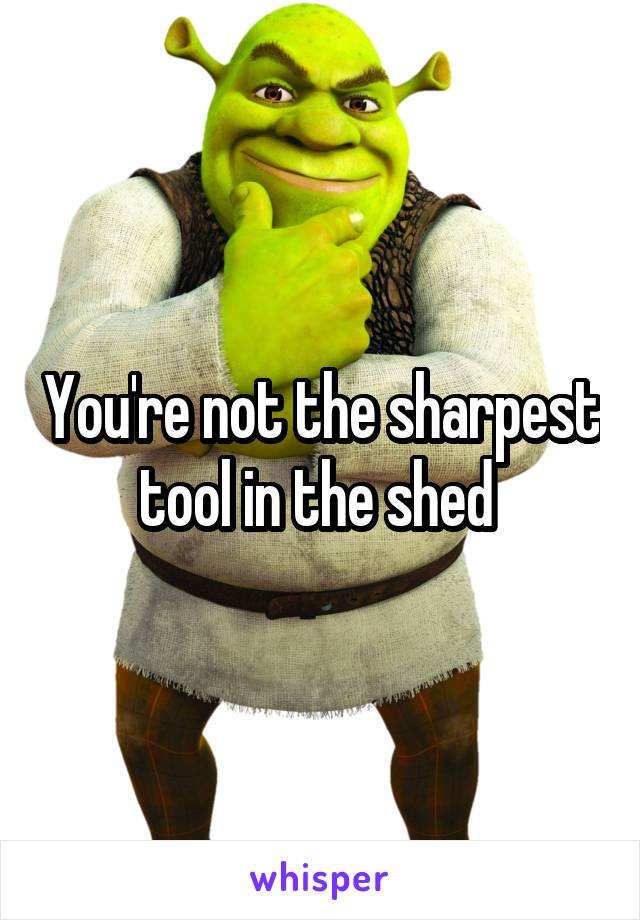 You're not the sharpest tool in the shed