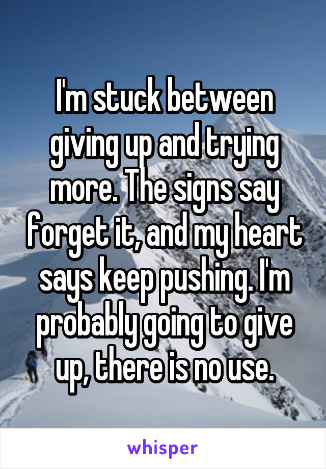 I'm stuck between giving up and trying more. The signs say forget it, and my heart says keep pushing. I'm probably going to give up, there is no use.