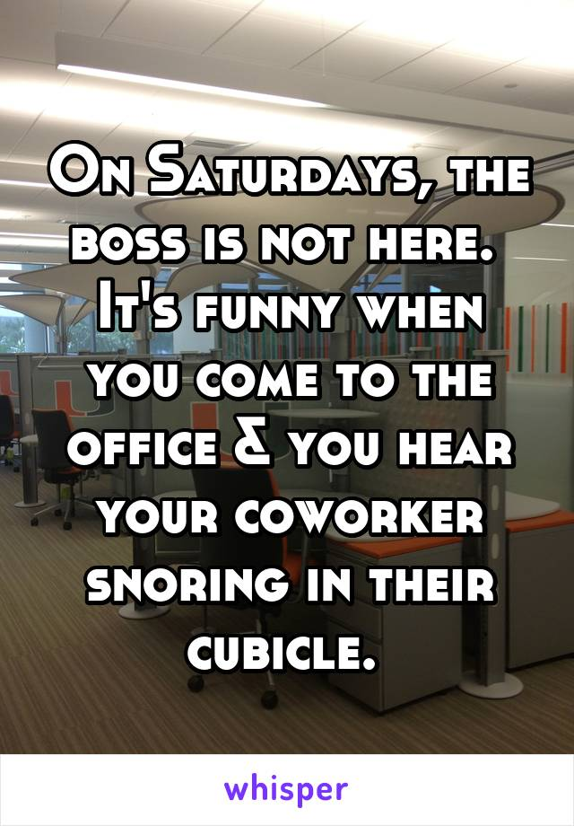 On Saturdays, the boss is not here.  It's funny when you come to the office & you hear your coworker snoring in their cubicle.